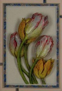 チューリップは愛の告白の花です。