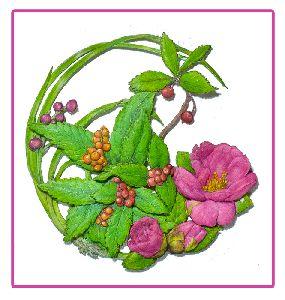 新作の山茶花のリース
