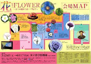 花展のパンフレットです