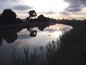 綾瀬川に映る夕空