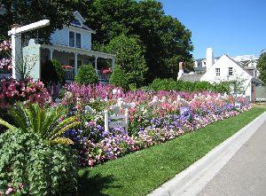 街中の小さなホテル・・・花に囲まれてきれいです
