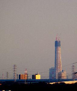ベランダから見える東京スカイツリー