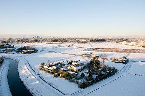 雪の朝(2012.1.24 AM7:25