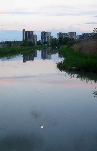 川面の夕景