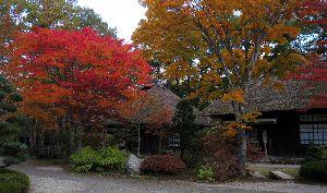 栃木県日光市湯西川温泉の紅葉