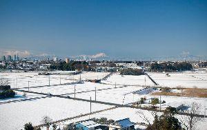 雪の朝(2014.2.5)