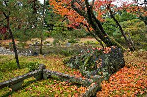 京都・無鄰庵(むりんあん)の紅葉