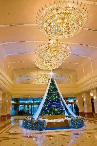 京王プラザホテル正面のクリスマスツリー