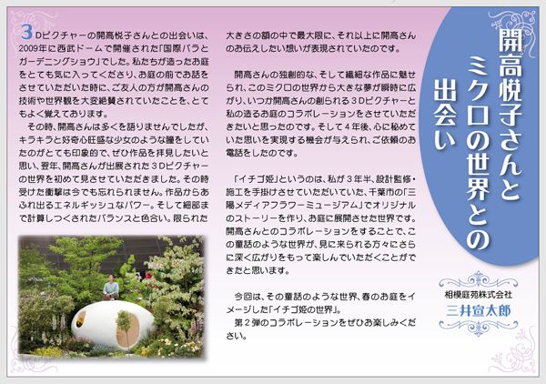 イチゴ姫の解説 三井さんのコメント